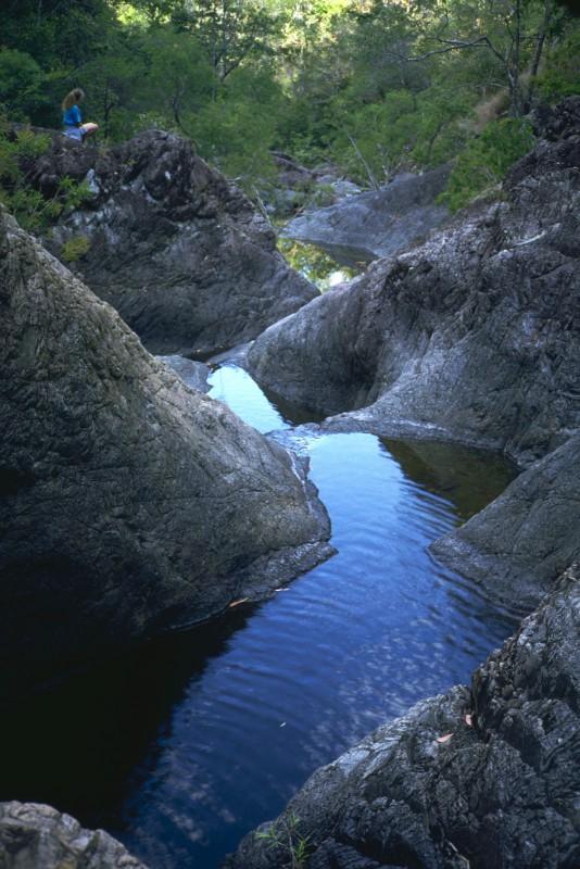 Love Stays Sill ~ Dead Horse Creek, Cardwell, Queensland, Australia
