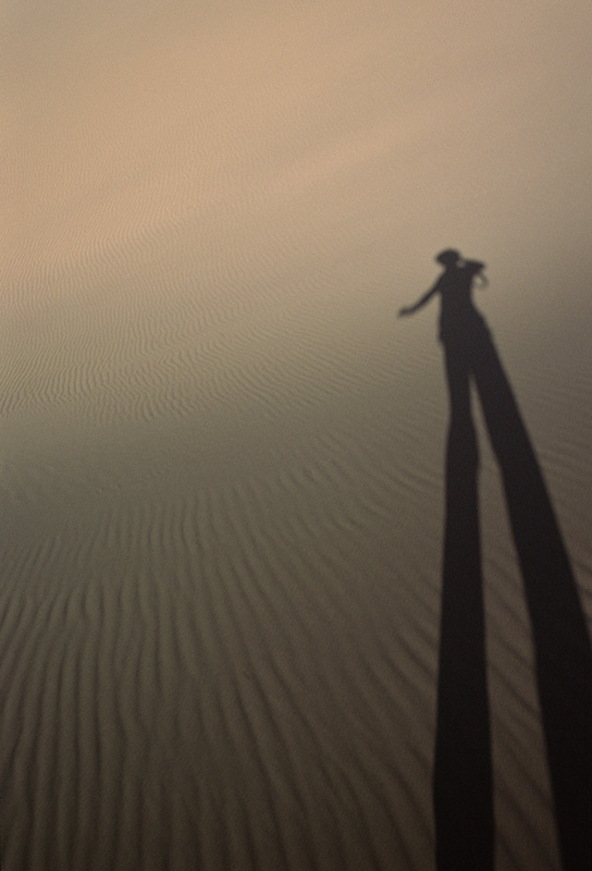 Shadow in the Singing Sands