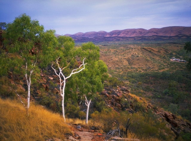 MacDonnell Ranges Station