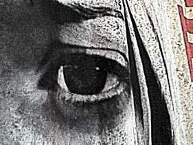 The saddest eye I have ever known