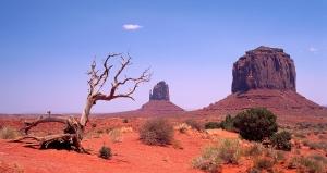 Challenge #8: Desert
