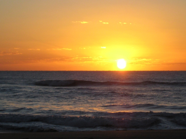 Sunshine Beach Sunrise