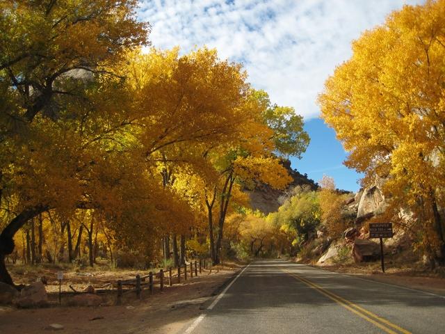 Jonesing for true autumn