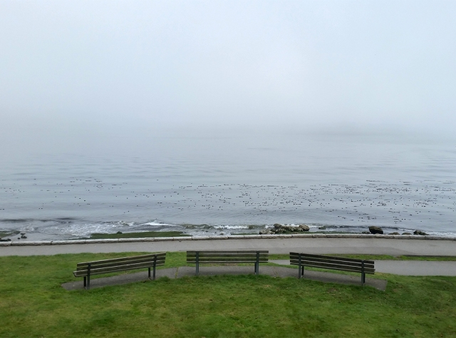 Burrard Inlet, Stanley Park, Vancouver, British Columbia, Canada