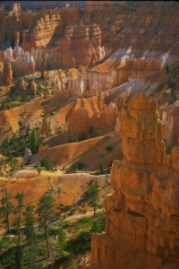 Bryce Canyon National Park, Hoodoos, Utah, Inited States