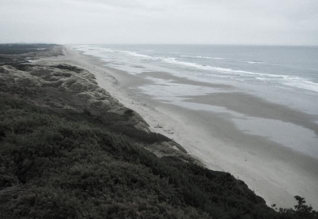 Pacific Coast, Oregon, United States of America