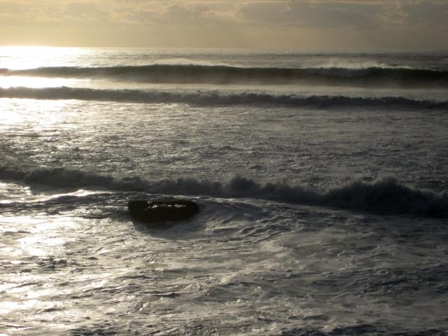 Pacific Coast, Near Santa Cruz, California, United States of America