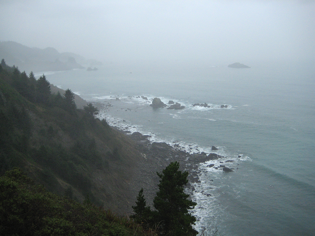 Pacific Coast, Oregon, United States of America