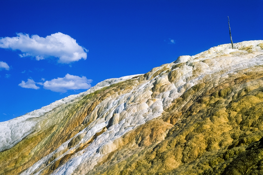 Mammoth Hot Springs, Yellowstone National Park, Wyoming, United States of America