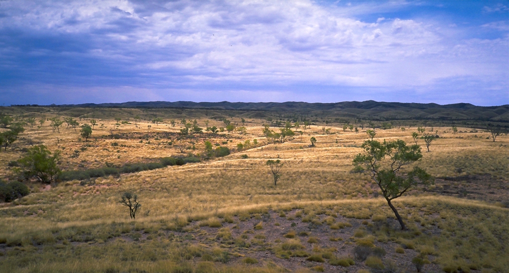 Grasslands, The Mereenie Loop, Near Gosses Bluff, Northern Territory, Australia