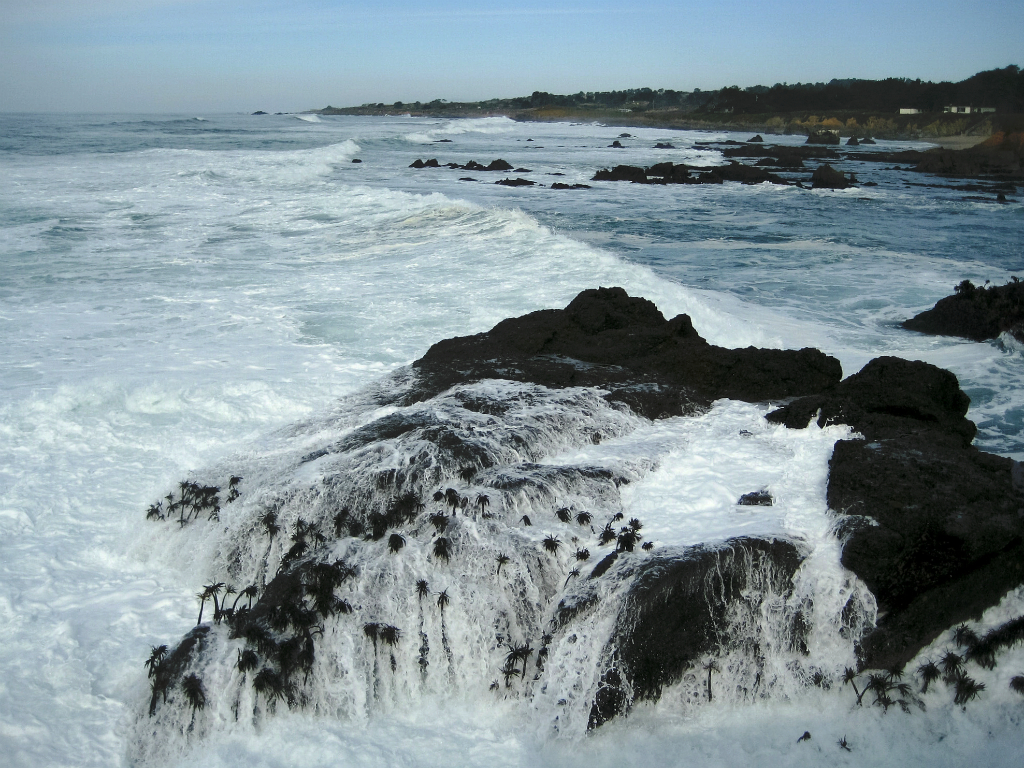 Surf, Near Pigeon Point Lighthouse, Pacific Coast Highway, California, United States of America