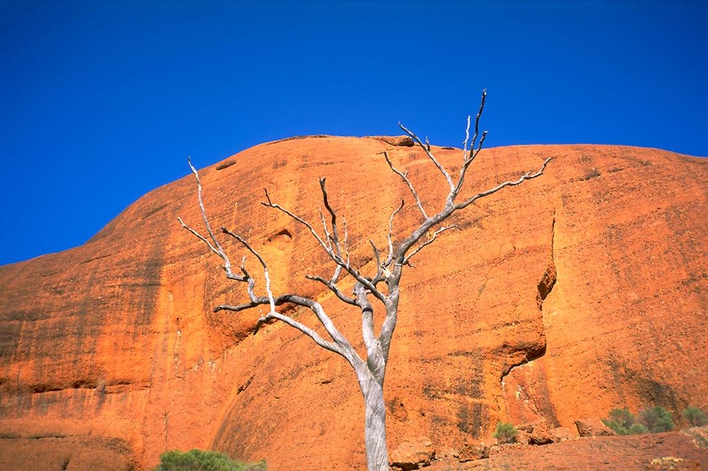 Life & Death & Stone, Kata Tjuta (The Oglas), Northern Territory, Australila
