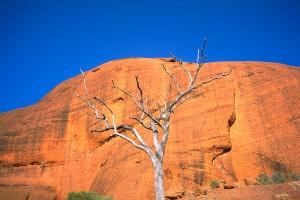 Life & Death & Stone, Kata Tjuta (The Oglas), Northern Territory, Australia