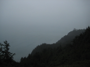 Grey Coastline, Pacific Coast Highway, Oregon, United States of America
