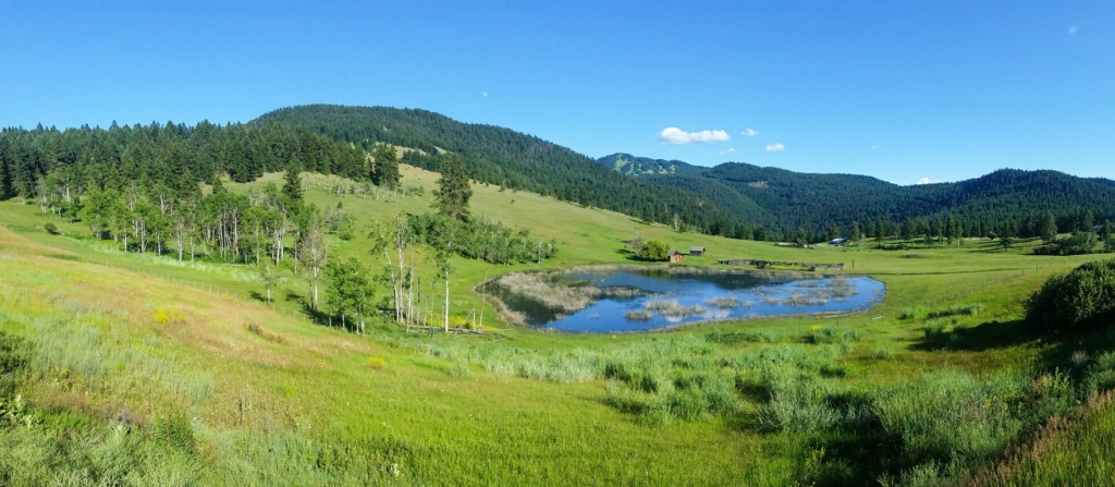 Idyllic Scene, Paul Lake Road, Kamloops, British Columbia, Canada