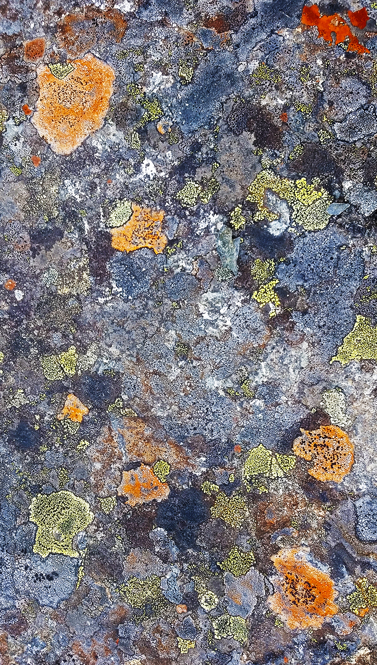 Granite and Lichen, Nicolum Valley, Cascade Mountains, British Columbia, Canada