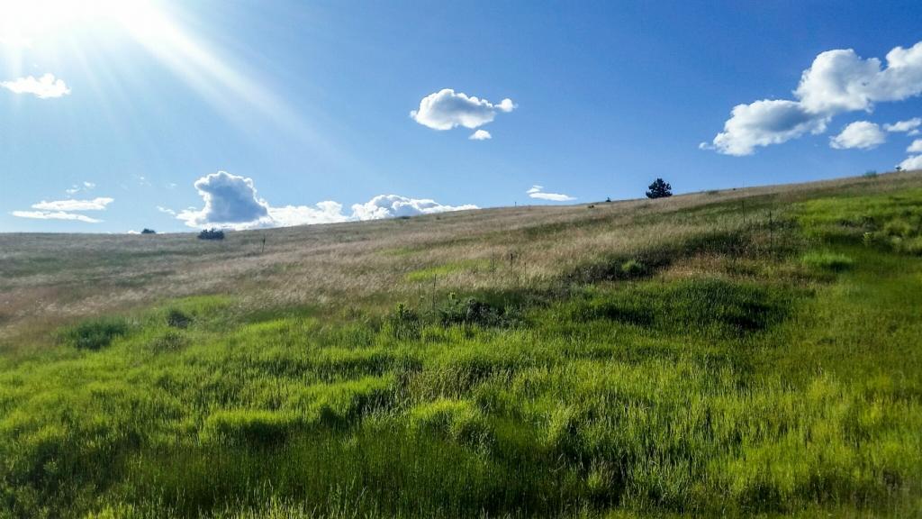 Big Sky ~ Big Land, Paul Lake Road, Kamloops, British Columbia, Canada