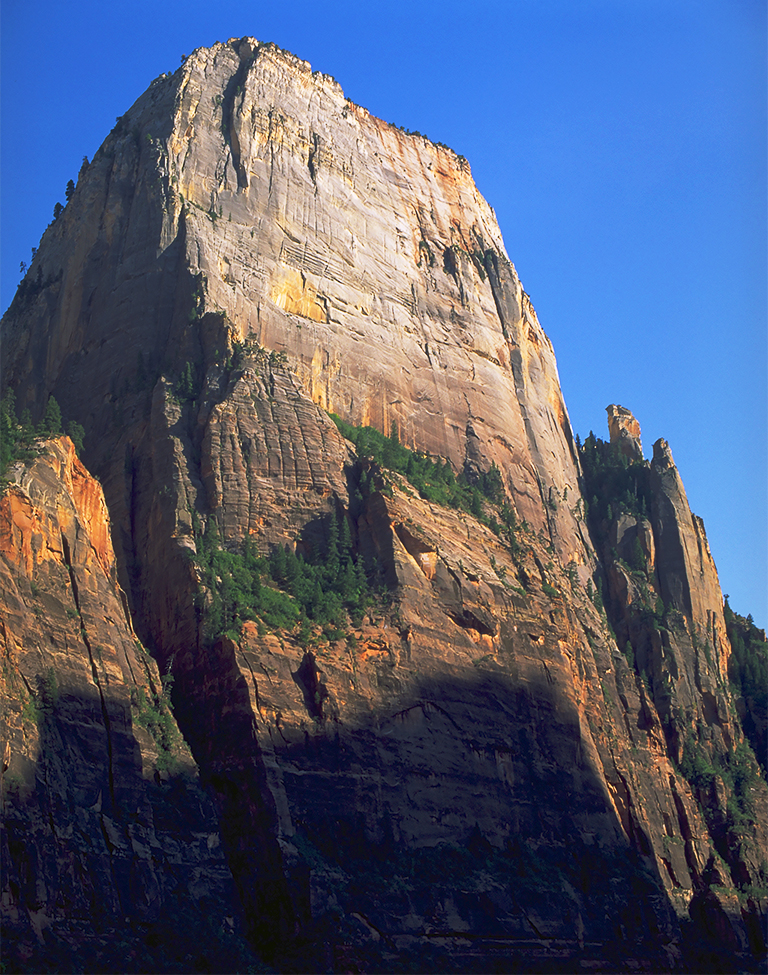 Solid Rock, Zion National Park, Utah, United States of America