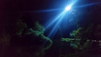 Light in the Darkness, Central Park, Burnaby, British Columbia, Canada
