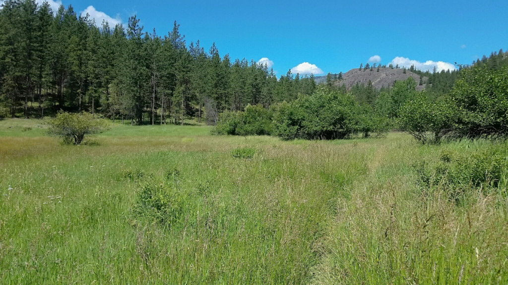 White Lake Trail, White Lake Grasslands Reserve, Okanagan Falls, British Columbia, Canada