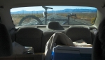 Rearview, South on State Road 375, Nevada, United States of America
