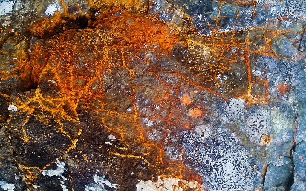 Lichen on Granite, Hope Slide, Nicolum Valley, Cascade Mountains, Crowsnest Highway, British Columbia, Canada