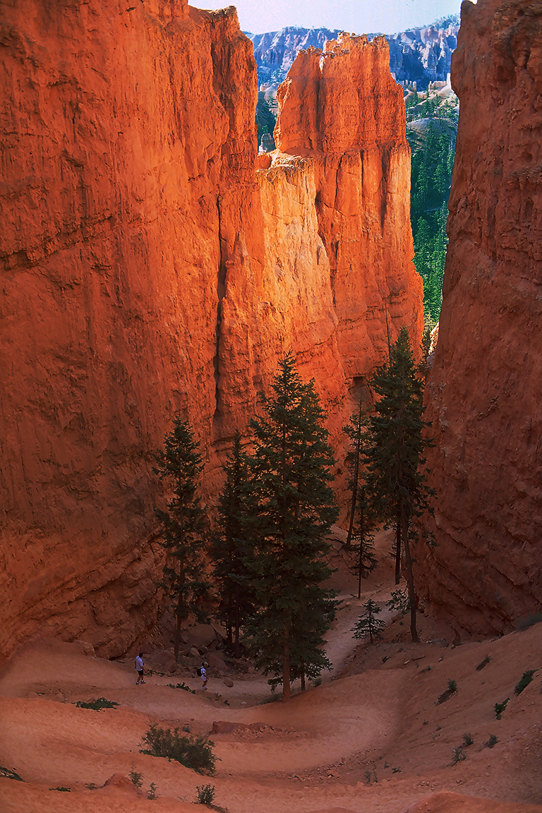 Hikers and Hoodoos, Bryce Canyon National Park, Utah, United States of America
