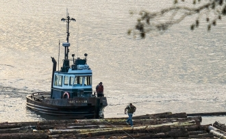 Tugboat Log Drivers, Pacific Spirit Regional Park, Vancouver, British Columbia, Canada