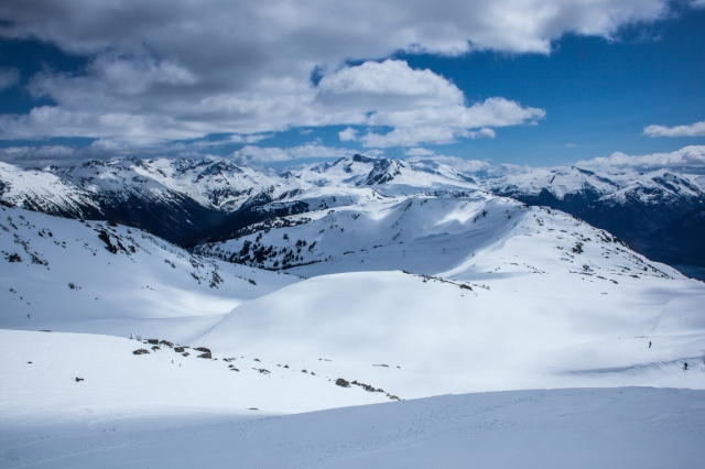 High Mountain Reverie, Burnt Stew Basin and Symphony Amphitheatre, Whistler Mountain, British Columbia, Canada