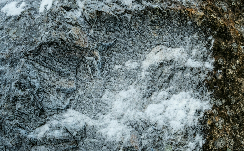 Frost and Lichen on Granite, Cheakamus River, Sea to Sky Highway, British Columbia, Canada