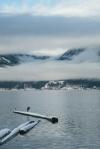 Heron, Howe Sound, Sea to Sky Highway, Britannia Beach, British Columbia, Canada