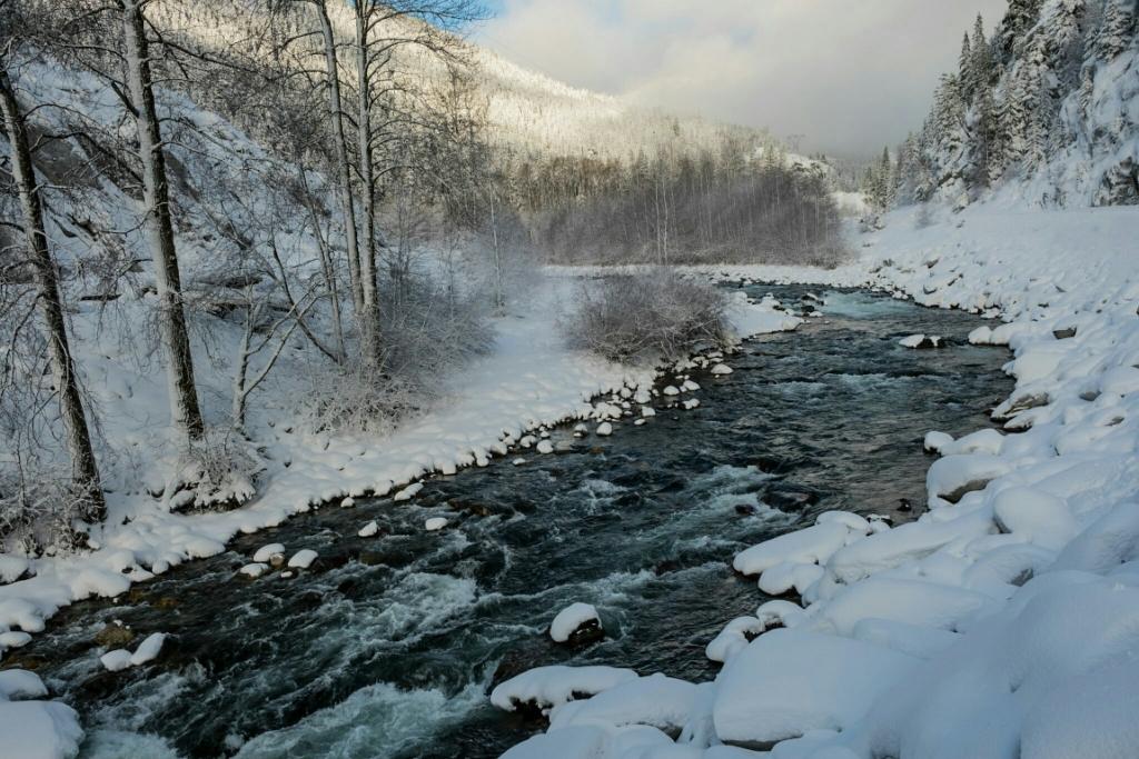 River Dream, Cheakamus River, Sea to Sky Highway, British Columbia, Canada