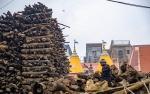 Wood, Manikarnika Ghat,