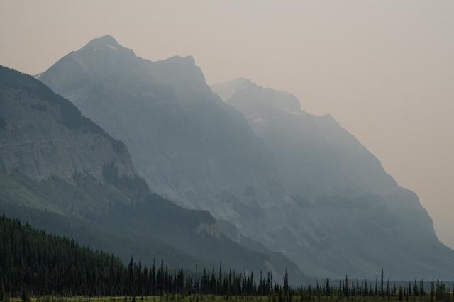 Smoke Valley, Icefields Parkway, Banff National Park, Alberta, Canada