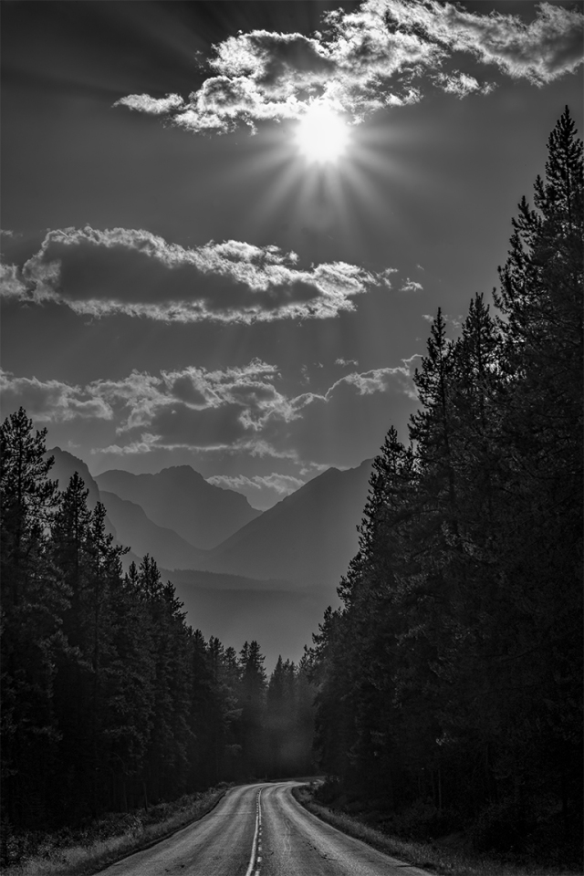 Narrow Corridor, Bow Valley Parkway, Banff National Park, Alberta, Canada
