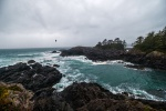Amphitrite Point, Wild Pacific Trail, Ucluelet, Vancouver Island, British Columbia, Canada