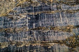Glacier Scoured Granite, Athabasca Glacier, Jasper National Park, Alberta, Canada copy