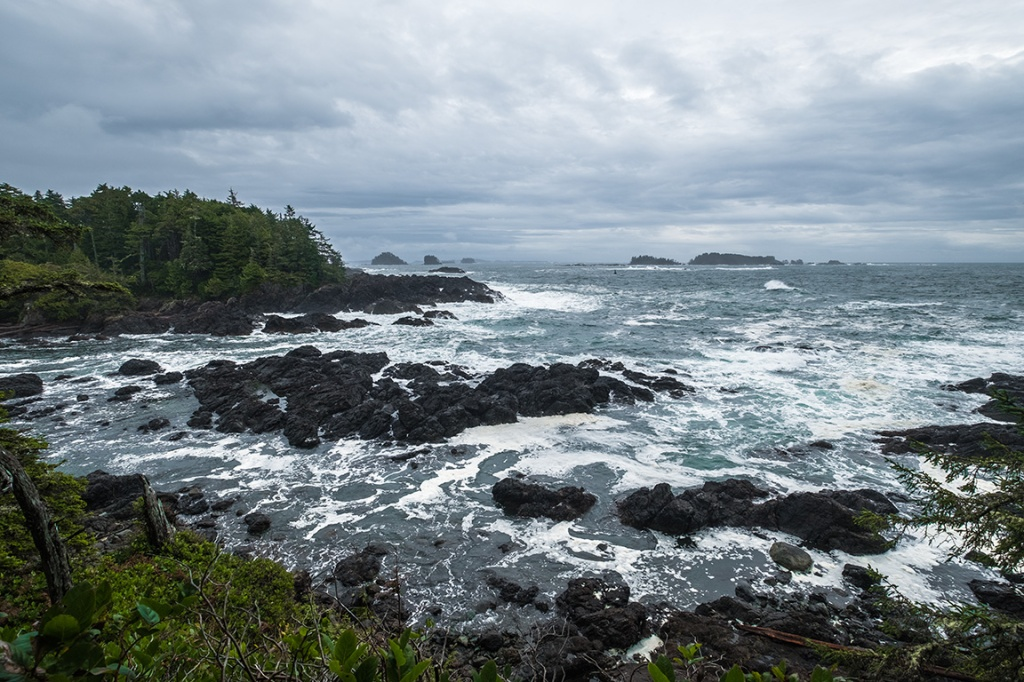 Wild Sea, Cygnet Cove, Ucluelet, Vancouver Island, British Columbia, Canada