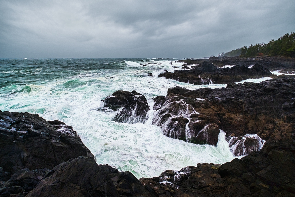Wild Pacific, Wild Pacific Trail, Ucluelet, Vancouver Island, British Columbia, Canada