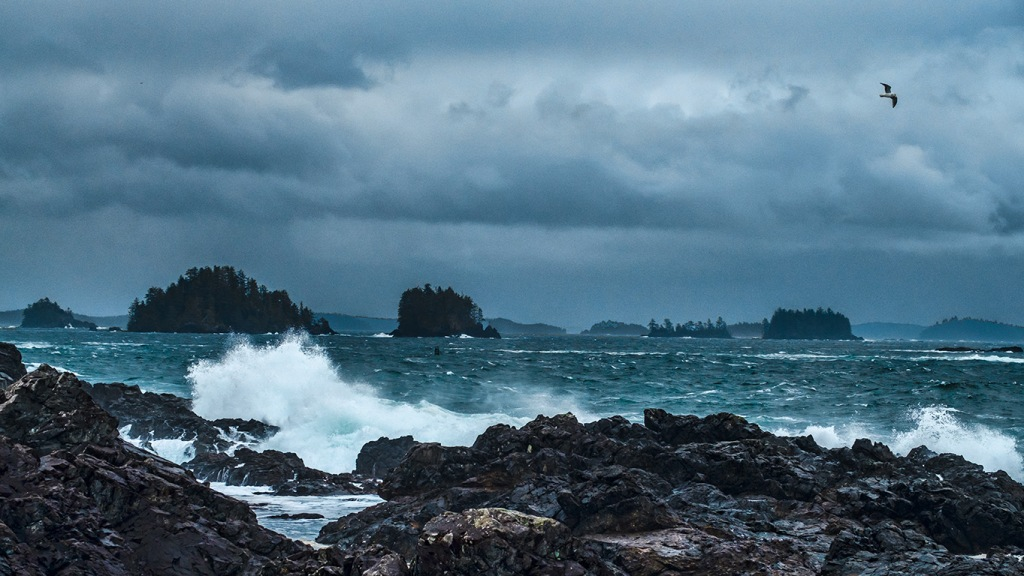 Caress, Amphitrite Point, Wild Pacific Trail, Ucluelet, Vancouver Island, British Columbia, Canada