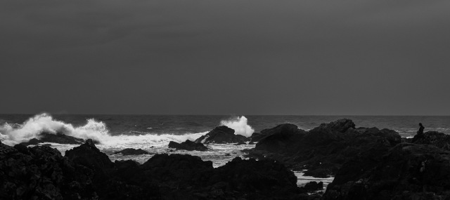 Remnants of a storm, Amphitrite Point, Wild Pacific Trail, Ucluelet, Vancouver Island, British Columbia, Canada