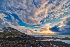 Weathered, Frank Island, Chesterman Beach, Tofino, Vancouver Island, British Columbia, Canada