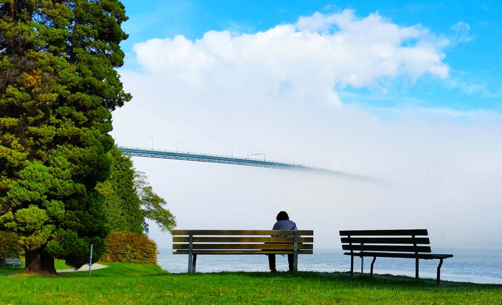 Enveloped in Fog, Lions Gate Bridge, Stanley Park, Vancouver, British Columbia, Canada