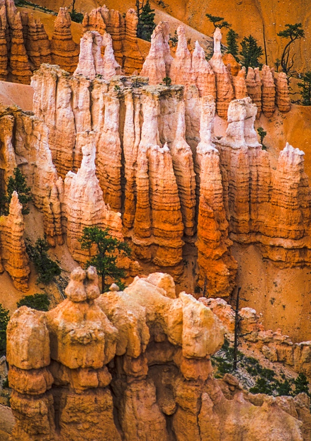 Time and Love, Hoodoos, Bryce Canyon National Park, Utah, United States of America