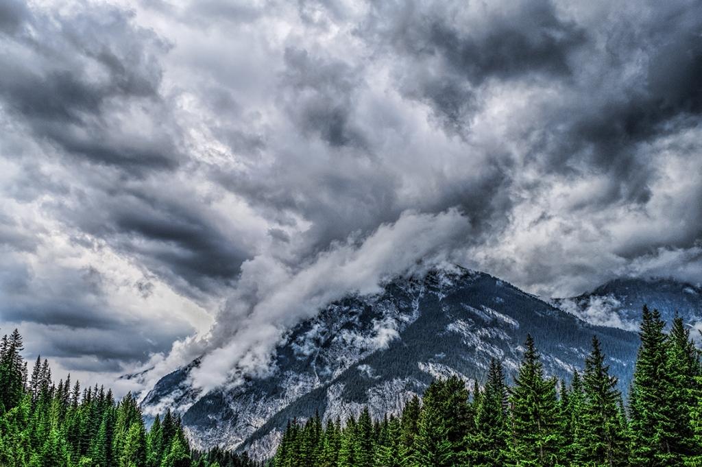 Verdant Corridor, Rocky Mountains, Trans Canada Highway, Near Spiral Tunnels, British Columbia, Canada