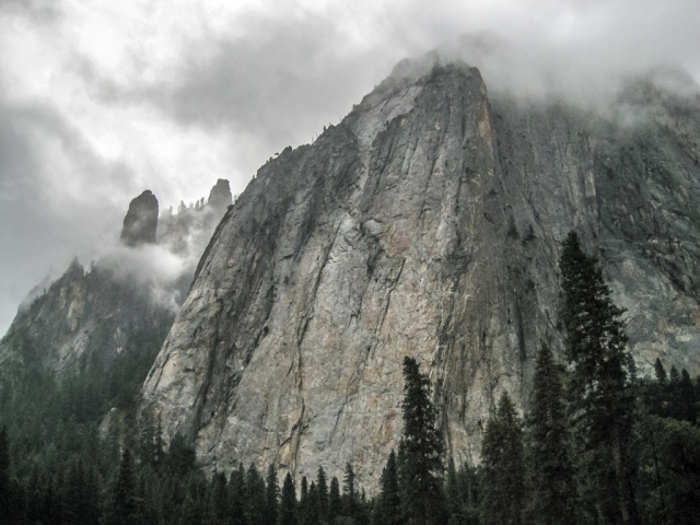 Granite and Conifers, Yosemite National Park, California, United States of America