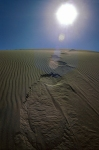 Footsteps in the Dunes, Ming Sha Shan, Mountains of Singing Sand, Dunhaung, Gansu, China