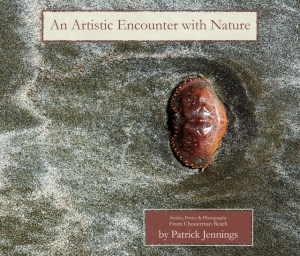 An Artistic Encounter With Nature: Stories, Poems and Photographs From Chesterman Beach, by Patrick Jennings