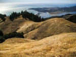 Golden Heights, Bolinas, From Panoramic Highway, Mt. Tamalpais State Park, California, United States of America