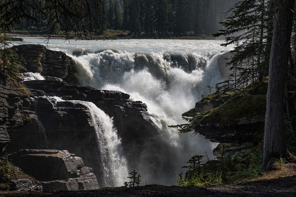 falling, athabasca falls, athabasca river, jasper national park, alberta, canada ii
